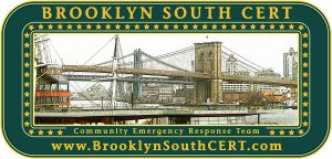 Brooklyn South Community Emergency Response Team